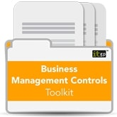 Business Management Controls Toolkit (Download)